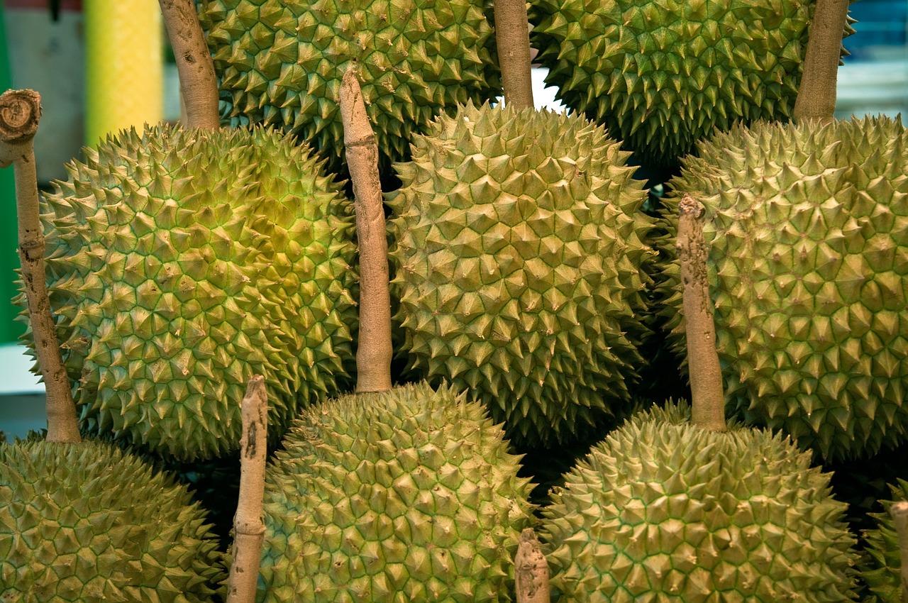jackfruit-hanging-in-market